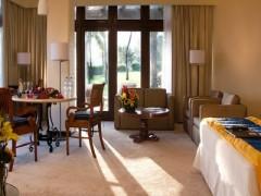 Foto de la habitacion Junior Suite Garden View