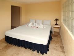 Foto de la habitacion Penthouse Olinalá
